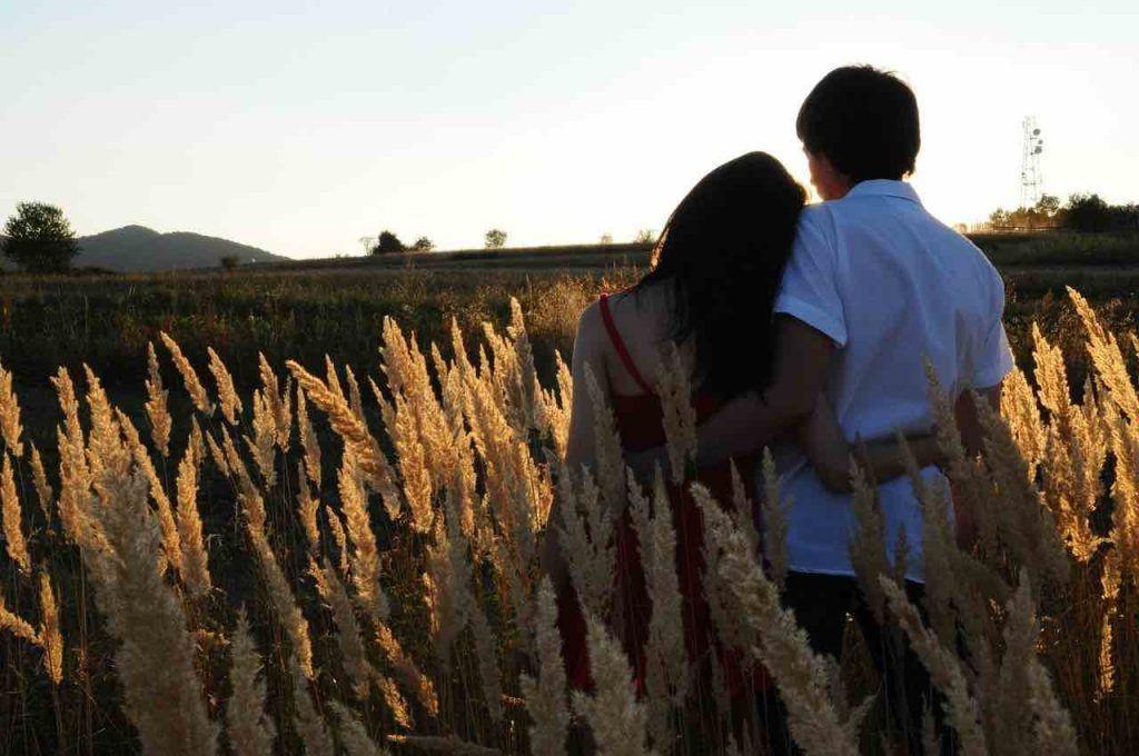 amour sera